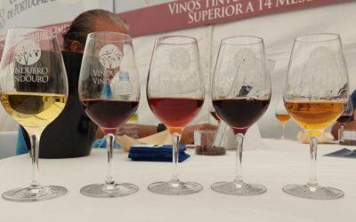 Prémios VinDuero-VinDouro irá oficialmente eleger os melhores vinhos de Espanha e Portugal de 2021